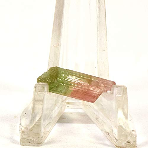 6.5 Carat 19mm Bi-Color Pink Green Tourmaline Rough Point Natural Mineral Stick Crystal Gemstone Specimen - Afghanistan