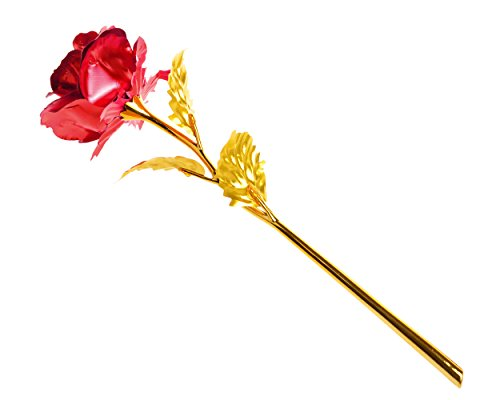 DS.DISTINCTIVE STYLE Ace Select 9.8 inch 24K Gold Foil Rose Flower Long Stem Luxury Floral Gifts Box - Red
