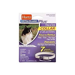 Hartz UltraGuard Plus Flea Tick Collar Cat