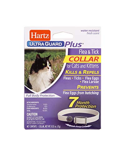 - Hartz UltraGuard Plus Flea Tick Collar Cat