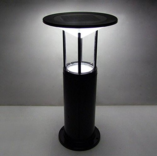 CARYY Solar Garden Light, Lawn Lamp, Aluminum Park Path Lighting, 30 x 60 CM, Black by CARYY