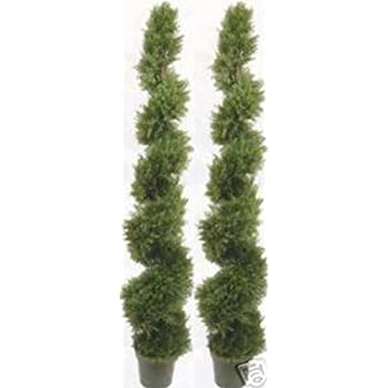 Amazon two 6 foot 4 inches artificial cypress spiral topiary two 6 foot 4 inches artificial cypress spiral topiary trees potted indoor or outdoor aloadofball Choice Image