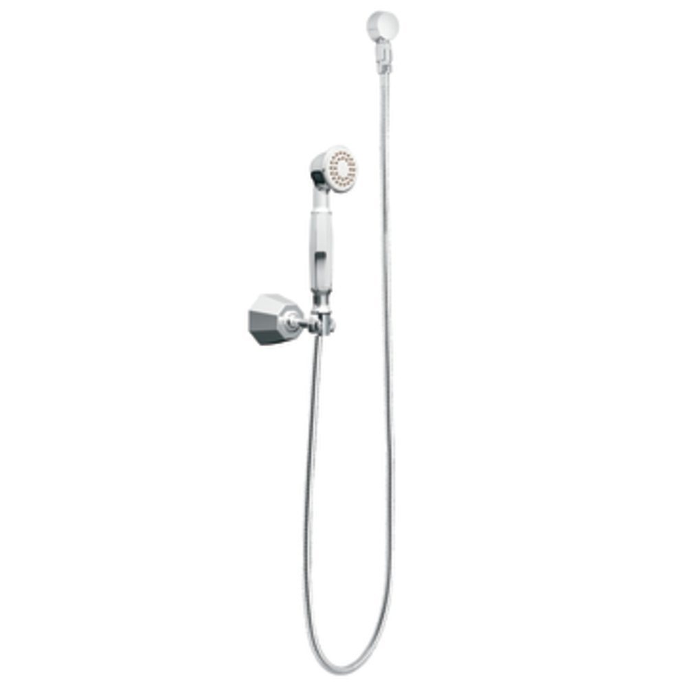 Moen S145 Felicity Handheld Shower, Chrome