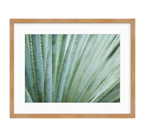 Framed Photographic Print, Abstract Green Botanical Wall Art, Modern Contemporary Wall Decor, Strands and Spikes' by Offley Green