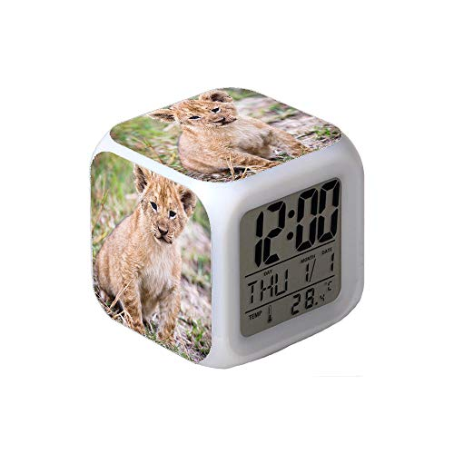 7Colors LED Changing Digital Alarm Clock Desk Thermometer Night Glowing Cube LCD Clock Home Decor Close-Up Photo of Lion Cub