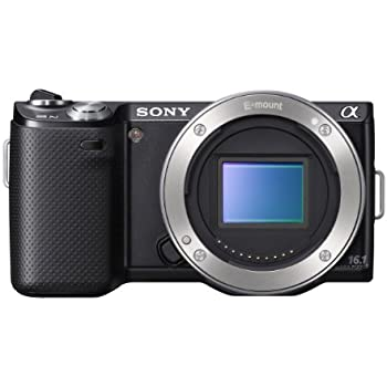 Sony NEX-5N 16.1 MP Mirrorless Digital Camera with Touchscreen - Body Only (Black)