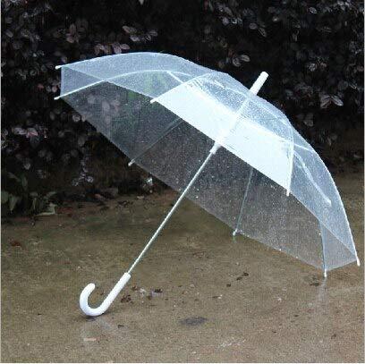 Clear Pvc Umbrella - 50pcs Wholesale Transparent Umbrellas Clear Pvc Long Handle Rainproof - Woman Rain Gold Glass Plastic Thor Transparent Mushroom Cube Bubble
