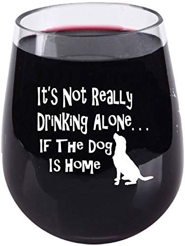 It's Not Really Drinking Alone If The Dog Is Home - Stemless Wine Glass - Tritan Plastic Material - 16 Ounce (Dog Holder Wine)
