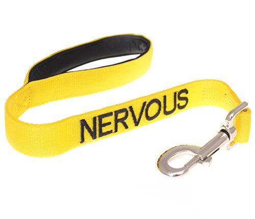 NERVOUS Yellow Color Coded 2 4 6 Foot Padded Dog Leash (Give Me Space) PREVENTS Accidents By Warning Others of Your Dog in Advance (Short 2 Foot Leash)