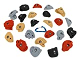 24 Rock-Like l Climbing Holds l Mixed Earth Tones