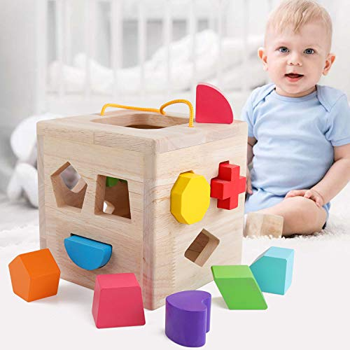 QZM Shape Sorter Toys with 12 Colorful