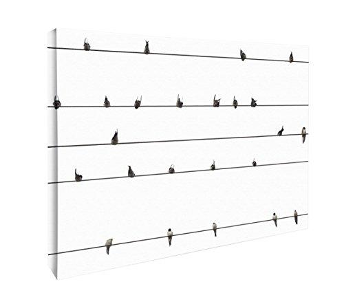 JP London CNV2276 Mod Birds on Wire Telephone Farm Animals Canvas Art Wall Decor, 1.5' x (Mod Birds)