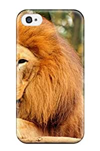 Fashionable Style Case Cover Skin For Iphone 4/4s- Excellent Tired Lion