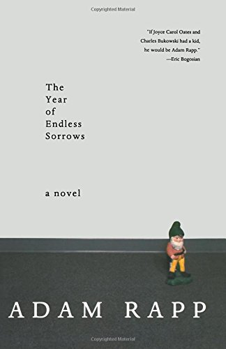 Download The Year of Endless Sorrows: A Novel pdf