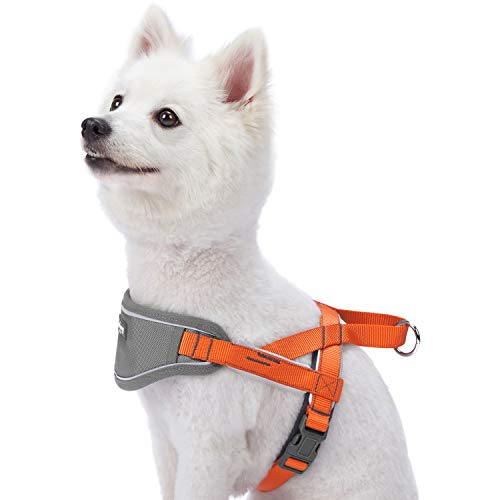 Blueberry Pet New 5 Colors Soft & Comfy 3M Reflective Strips Padded Dog Harness Vest, Chest Girth 20.5