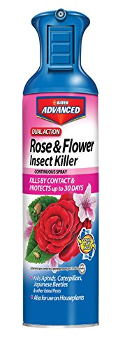Ortho Rose (Bayer Advanced 701330 Dual Action Rose and Flower Insect Killer Continuous Spray, 15-Ounce (Not Sold in NY))