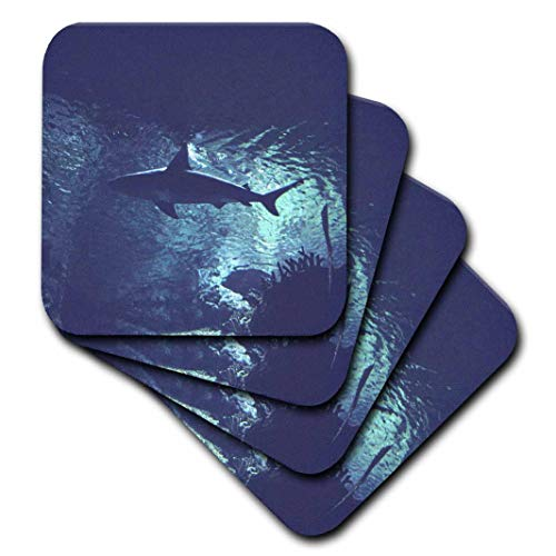 3dRose cst_12305_1 Shark in The Ocean-Soft Coasters, Set of 4