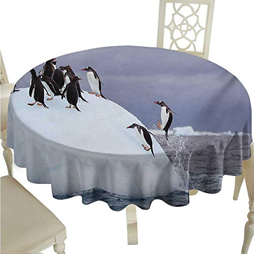 Zodel Wrinkle Resistant Tablecloth Underwater Gentoo Penguin On Iceberg Freezing Wilderness Antarctic Landscape Print Excellent Durability D54 Suitable for picnics,queuing,Family