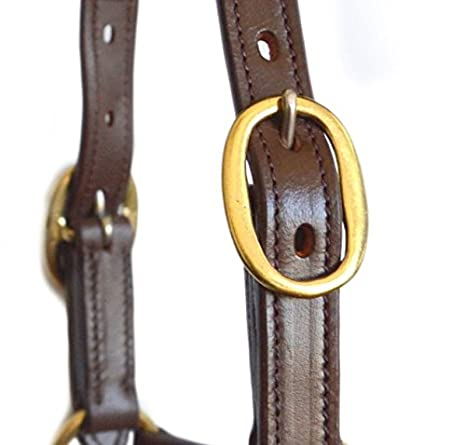 Tack Makers New Rolled Leather Horse Halters Headcollars Double Adjustable Crown Full//Cob Full SIE