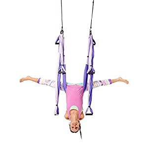YOGABODY Yoga Trapeze [official] Yoga Swing/Sling/Inversion Tool, Purple with Free DVD