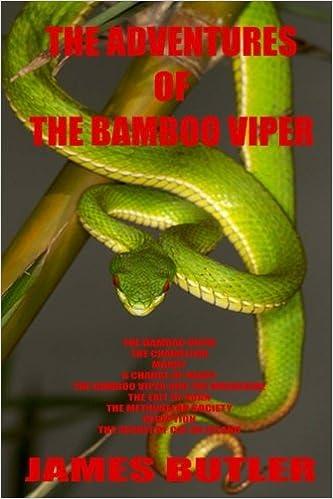 IL BAMBÙ VIPER (Italian Edition)