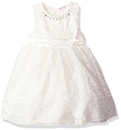 - Nannette Girls' Toddler' Embroidered Organza Dress with Jewel Neckline, White, 3T