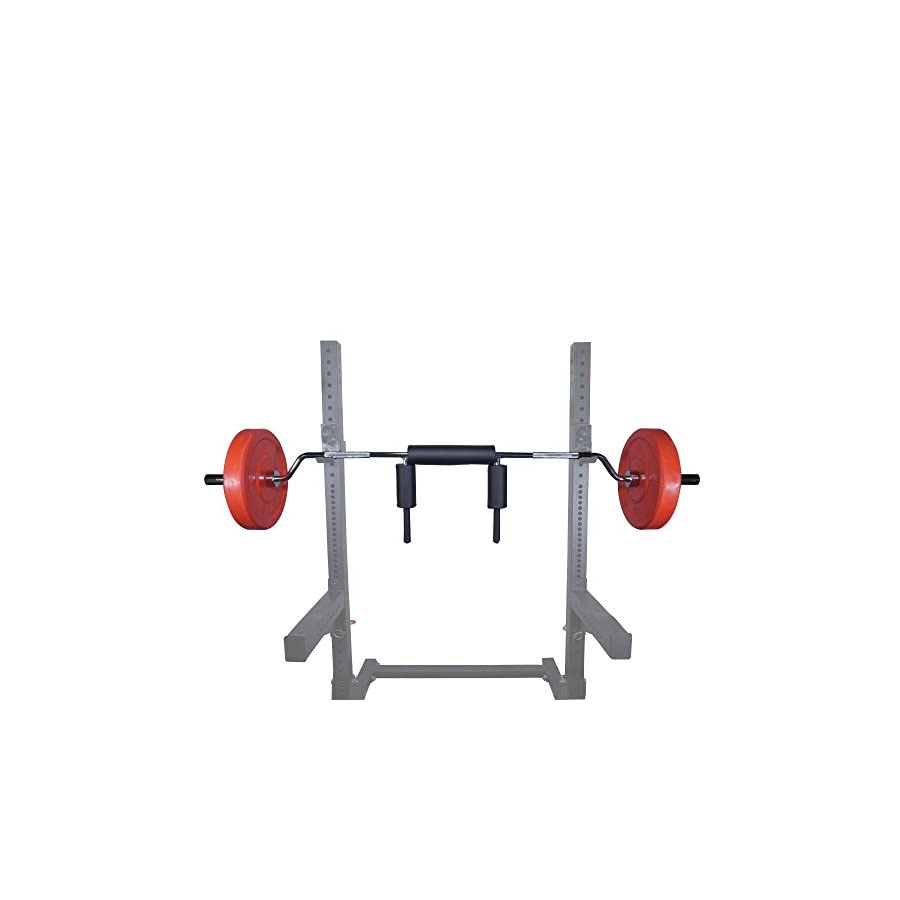 Titan Fitness Safety Squat Olympic Bar
