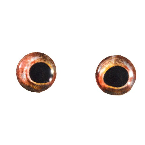 10mm Mirrored Red Bass Glass Fish Eyes Nautical Doll Irises for Art Polymer Clay Taxidermy Sculptures or Jewelry Making Set of 2
