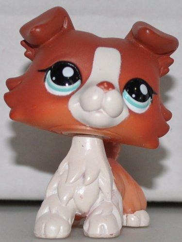 Collie #1542  Littlest Pet Shop  Collector Toy - LPS