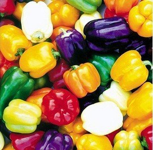 HigardenMixed Color Yellow Puple Red Green White Mix Blue Alarm Spicy Sweet pepper Vegetable seeds Paprika 100 unids 6