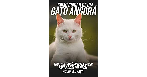 ANGORA BAIXAR DO GATO MUSICA