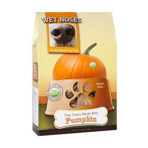 Wet Noses Pumpkin 14 oz (Pumpkin, 1-Pack)