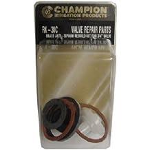 CHAMPION IRRIGATION PD RK-30C Anti-Siphon Valve Kit, 3/4-Inch
