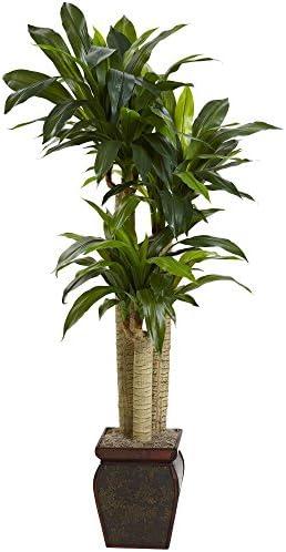 Nearly Natural 6670 Cornstalk Draceana with Vase, 4.5-Feet