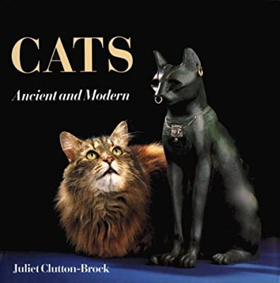 Cats: Ancient and Modern by Juliet Clutton-Brock (1993-11-03)
