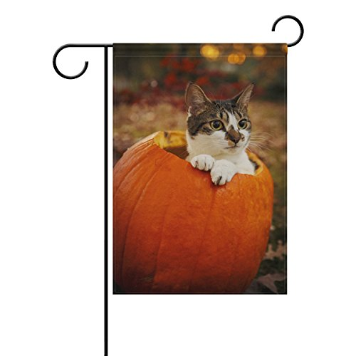 Double Sided Lovely Animal Petit Cat in Pumpkin Autumn Festival Thanksgiving Polyester Garden Flag Banner 12 x 18 Inch for Outdoor Home Garden Flower Pot Decor