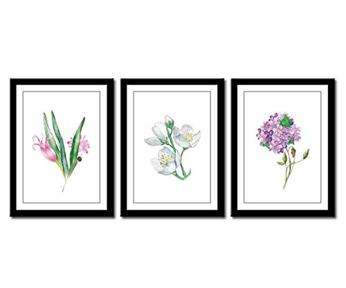 Canvas Wall Art Flowers Picture with Black Frames Colorful Blossom Artwork Simple Life Watercolor Painting Prints Contemporary Wall Art for Office Wall Decor Home Decorations 12
