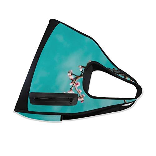 Sports Gym Sakura DEZIRO 10 Bags Bag for CT6fq