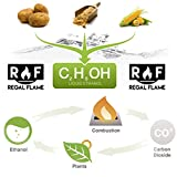Regal Flame Premium Ventless Bio Ethanol