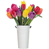Stargazer Barn - The Rainbow Bouquet - Farm Fresh Colorful Tulips - Vase Included