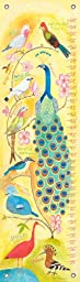 Oopsy Daisy Birds of a Feather Donna Ingemanson Growth Charts, Yellow, 12 x 42\