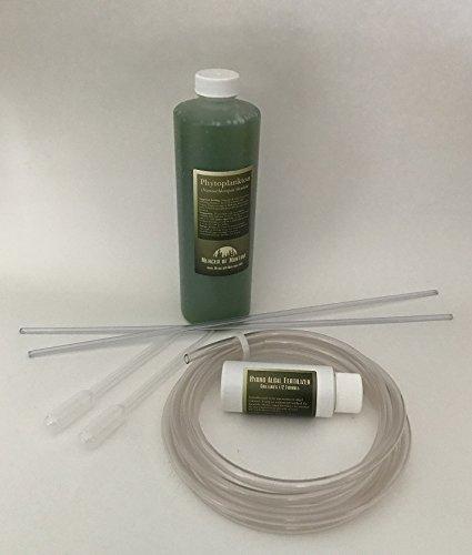 Amazon Phytoplankton Culture Kit Pet Supplies