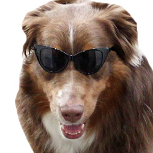 G011 Dog cateye Sunglasses Glasses goggles w strap retainer M-L dogs 20lb&over (Black) -