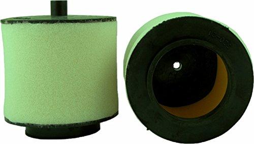 450 foreman air filter - 9