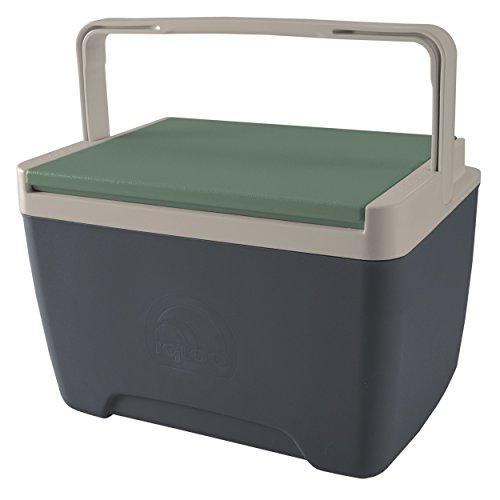 9 quart igloo cooler - 3