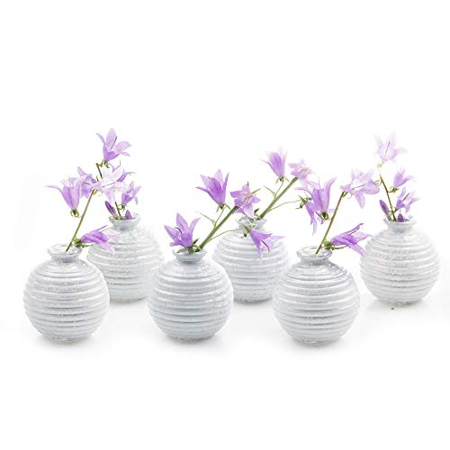 - Chive - Smasak, Small Round Glass Flower Vase, Decorative Rustic Floral Vase for Home Decor Living Room Centerpieces and Events, Single Flower Bud Vase -  Bulk Set of 6 (White)