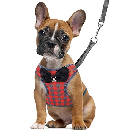 RYPET Small Dog Harness and Leash Set No Pull Pet Harness with Soft Mesh Nylon Vest for Small Dogs and Cats