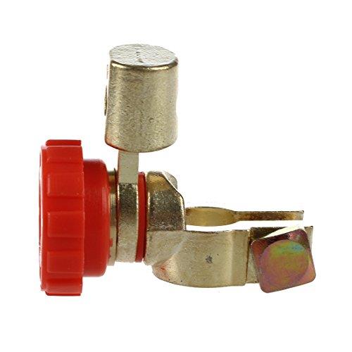 Verre de vin de Silicone Recognizer Nearthfr Support de Sachet /à th/é de Silicone de Forme d/écureuil 15PCS Mignon identificateur de Silicone de Charme pour des Tasses de Tasses 5 Couleurs