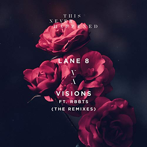 Visions (feat. RBBTS) [The Rem...