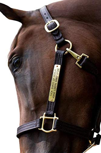 LEATHER HORSE HALTER HEAD COLLAR NAME PLATED BLACK BROWN SALE